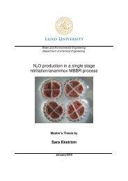 N2O production in a single stage nitritation ... - Kemiteknik, LTH