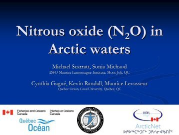 Nitrous oxide (N2O) in Arctic waters - ArcticNet