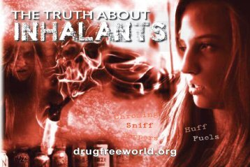 INHALANTS - Drug Salvage Campaign