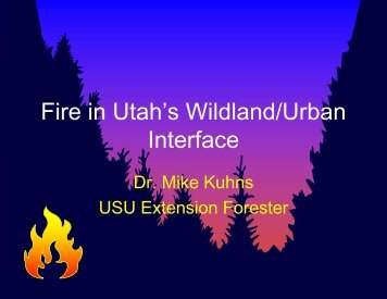 Fire in Utah's Wildland/Urban Interface - Forestry