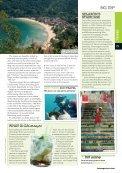 Rio and Brazilian Islands - Page 4