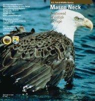 Mason Neck National Wildlife Refuge - Conservation Library