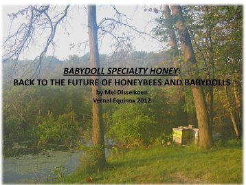BABYDOLL SPECIALTY HONEY: BACK TO THE FUTURE OF ...
