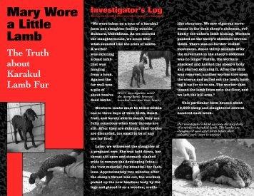 What is karakul lamb fur?