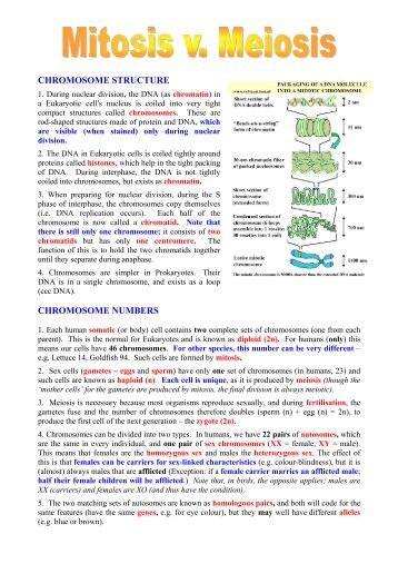 a2 biology glossary A-level biology revision guides and question banks covering applications of genetic engineering, molecules and enzymes, photosynthesis and all core a-level topics.