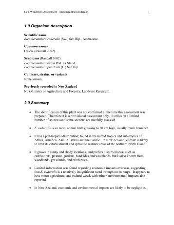 Eleutheranthera Ruderalis.pdf - Biosecurity New Zealand
