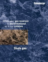 Shale Gas - When your gas reservoir is unconventional - Texas A&M ...