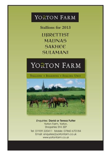 download stallions 2013 brochure - Yorton Farm