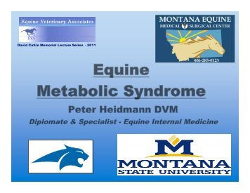 Equine Metabolic Syndrome - Montana Equine Medical & Surgical ...
