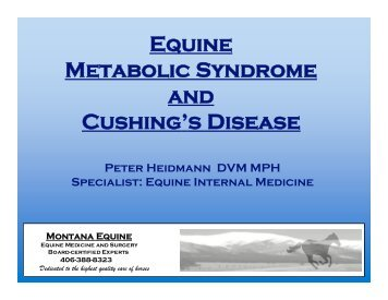 Equine Metabolic Syndrome and Cushing's Disease, Dr. Peter