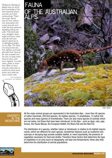 Fauna of the Australian Alps - Australian Alps National Parks