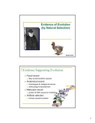 AP B Lecture 6 Evidence for Evolution PPT