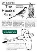 Backyard Wildlife - Page 4