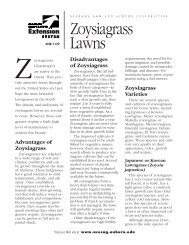Zoysiagrass Lawns - Alabama Cooperative Extension System