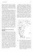 POORLY KNOWN ARGENTINE MARSUPIAL - Sarem - Page 3