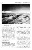 POORLY KNOWN ARGENTINE MARSUPIAL - Sarem - Page 6