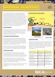 Sand Dunes (.PDF 486Kb)