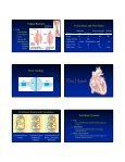 Circulatory System Functional Connections Circulatory System Parts ... - Page 4