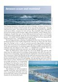The Falsterbo Peninsula - Page 3