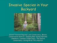 Invasive Species Network (ISN) - The Leelanau Conservancy