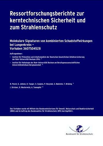 Ressortforschungsberichte zur kerntechnischen ... - DORIS - BfS