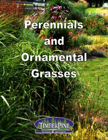 Perennial Catalog - TimberPine