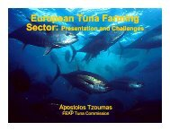 European Tuna Farming Sector: Presentation And Challenges