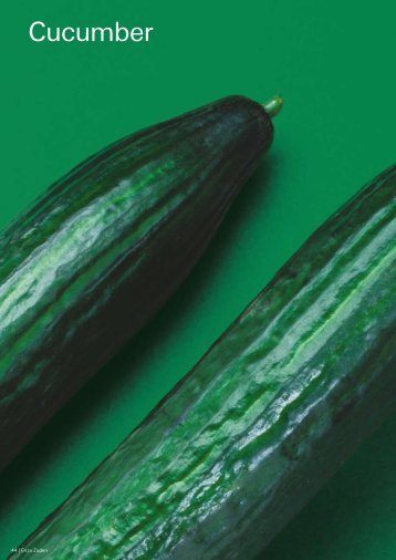 Export Catalogue Cucumber - Enza Zaden
