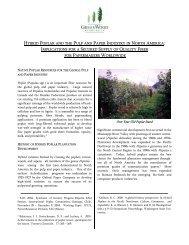 Hybrid Poplar White Paper - Greenwood Resources