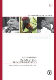 Investigating the role of bats in emerging zoonoses - Avian Influenza ...