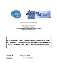 pdf en anglais (4 Mb) - CIRCE