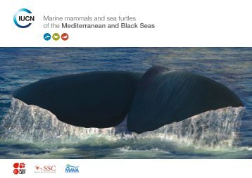 Marine mammals and sea turtles of the Mediterranean and ... - IUCN