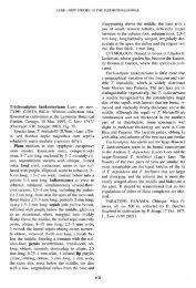 Lindleyana 11(2): 108, f. 35. 1996 - Epidendra