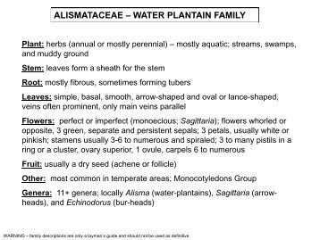 ALISMATACEAE – WATER PLANTAIN FAMILY - Flora by Max