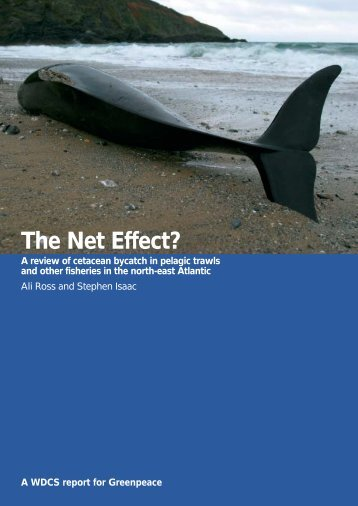 The Net Effect? - Whale and Dolphin Conservation Society