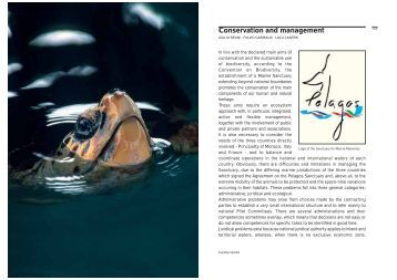 Conservation and management - Udine Cultura