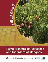 Pests, Beneficials, Diseases and Disorders of Mangoes - Northern ...