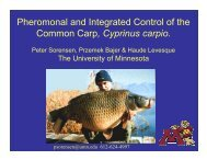 Pheromonal and Integrated Control of the Common Carp, Cyprinus ...