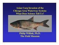 Presentation. Asian Carp Invasion of the Chicago Area