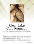 Clear Lake Carp Roundup - Iowa Department of Natural Resources - Page 2