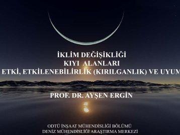 KIYI ALANLARI Prof. Dr