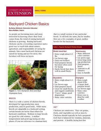Backyard Chicken Basics - University of Minnesota Extension Service