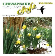 Chesapeake Style Online
