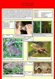 Die Rote Liste.pdf