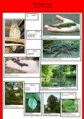 Die Rote Liste.pdf - Seite 2