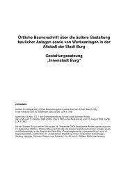"""Gestaltungssatzung """"Innenstadt Burg"""""""