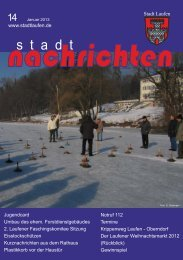 Ausgabe Januar 2013 nachlesen - Stadt Laufen
