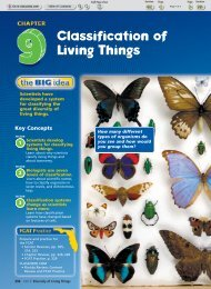 Classification of Living Things - Barrington Middle School