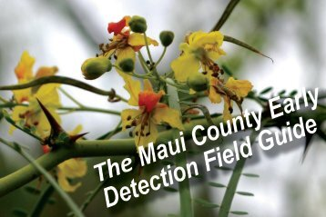 Maui - Hawaii Early Detection Network