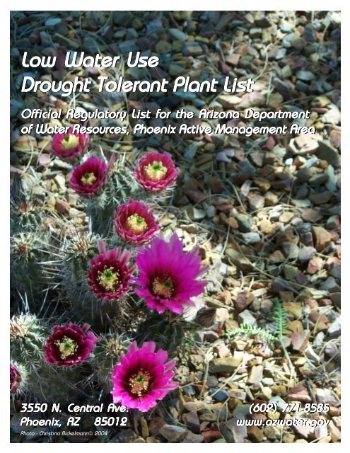 Low Water Use Drought Tolerant Plant List - Arizona Department of ...